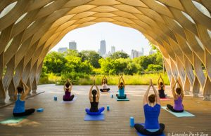 Lincoln_Park_Zoo_Chicago_yoga